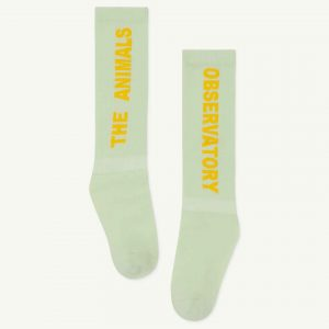 The Animals Observatory  - WORM KIDS SOCKS SOFT GREEN - Clothing