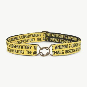 The Animals Observatory  - LOVEBIRD ONESIZE BELT YELLOW - Accessories