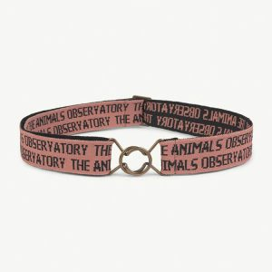 The Animals Observatory  - LOVEBIRD ONESIZE BELT PINK - Accessories