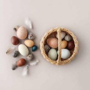 Moon Picnic  - A DOZEN BIRD EGGS - Toys